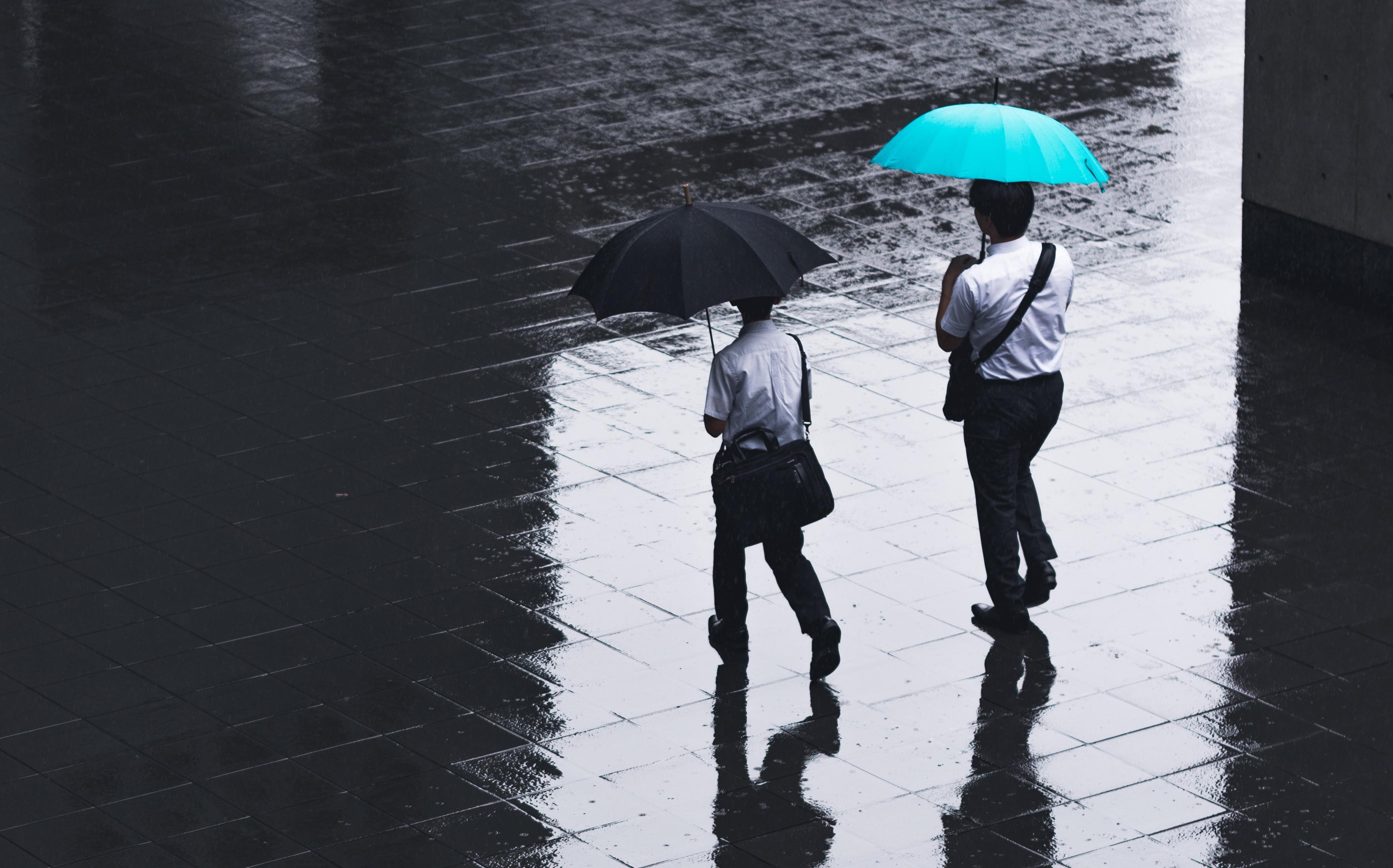 生命保険と損害保険の違いをわかりやすく解説